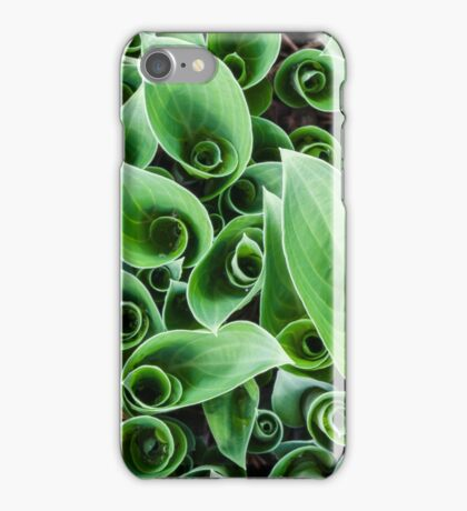 Interesting plant pattern iPhone Case/Skin