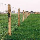 Country Fence by Jasper Smits