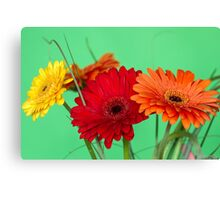 Gerberas in vase on a green background Canvas Print
