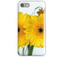 Two gerberas iPhone Case/Skin