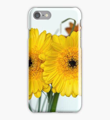 Two gerberas iPhone Case/Skin