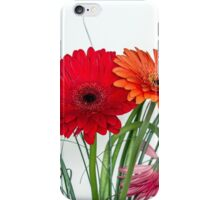 Many gerberas in white iPhone Case/Skin