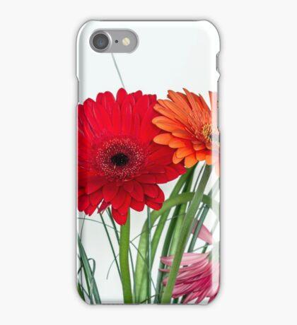 Many gerberas in white iPhone Case/Skin