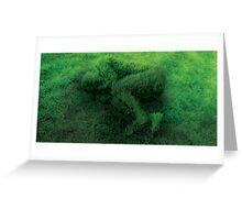 Sleeping On Grass Greeting Card