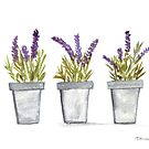 Lavender watercolor  by Monika Howarth