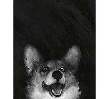 Sausage Fox Photographic Print