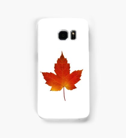 Maple Leaf - Algonquin Park, Canada Samsung Galaxy Case/Skin