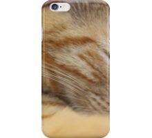 Sleeping Cat iPhone Case/Skin