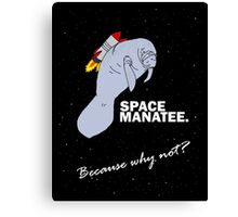 Space Manatee Canvas Print