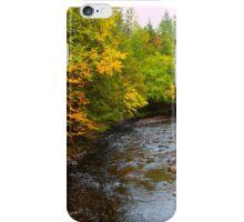 River in Fall iPhone Case/Skin