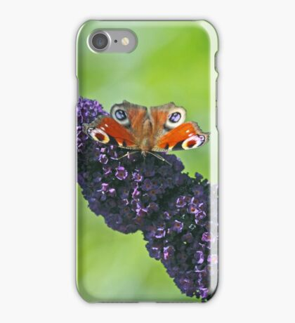 Peacock Butterfly on Budleia iPhone Case/Skin