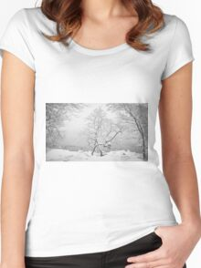Winter scene Women's Fitted Scoop T-Shirt