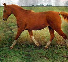 Vintage Arabian by WildestArt