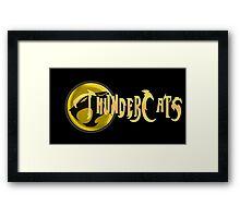 Thundercats show Framed Print