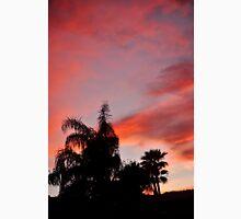 SUNSET OVER PALM DESERT MOUNTAINS Unisex T-Shirt
