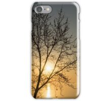 A Filigree of Branches Framing the Sunrise iPhone Case/Skin