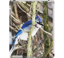 The Birds - sly blue jay (2011) iPad Case/Skin