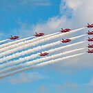 Reds Eleven by Colin Smedley