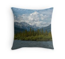 Any Colour But Vermillion Throw Pillow