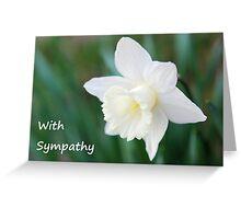 White Daffodil Sympathy Card Greeting Card