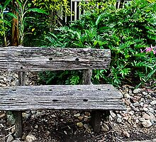 A Recycled Bench by Margaret Stevens