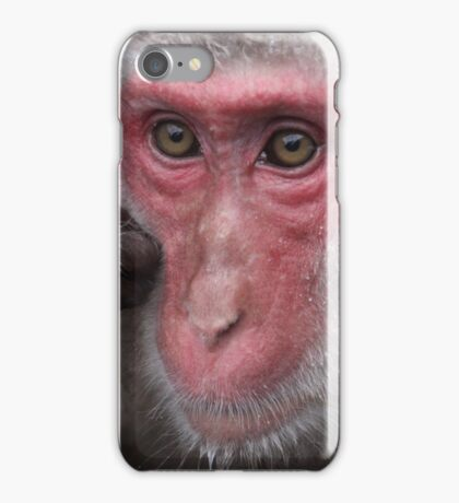 Snow Monkey Jigokudani Japan iPhone Case/Skin