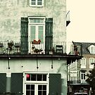 New Orleans by Amped