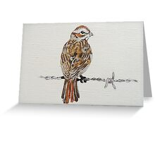 sparrow on barbed wire Greeting Card