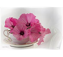 A Cup Of Pink Lavatera Flowers Poster