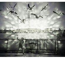 Feeding the Seagulls Photographic Print