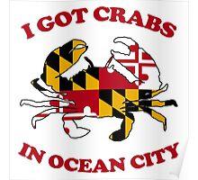 Ocean City Crabs Poster