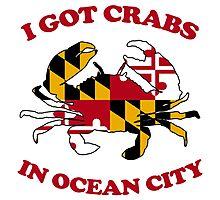 Ocean City Crabs Photographic Print