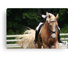 Dressage Horse Canvas Print