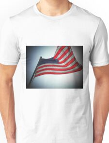 The flaws in your design..lies lead to disgrace..a failure to reform..I used to know what this flag stood for..now I don't know anymore T-Shirt