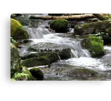 Letting Mother Nature Have Her Way Canvas Print