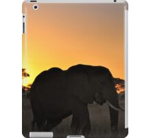 """A new Day"" iPad Case/Skin"