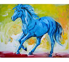 Blue Horse Photographic Print