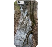 reflected on stream iPhone Case/Skin