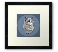 Ragdoll Kitty Cat Framed Print
