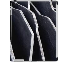 Berlin Memorial iPad Case/Skin