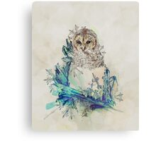 Night Frost Canvas Print
