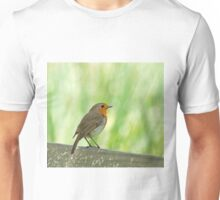 European Robin Perched on Seat Unisex T-Shirt