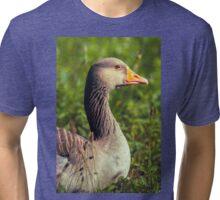 Greylag Goose Tri-blend T-Shirt