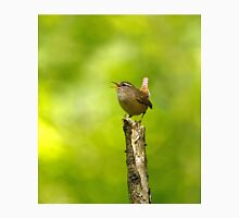Winter Wren Singing in Woodland Unisex T-Shirt
