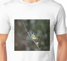 Blue Tit in Snow Unisex T-Shirt