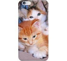 Three Little Kittens iPhone Case/Skin