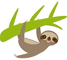 Winking sloth an a bench Photographic Print