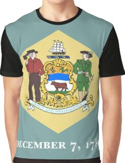 Delaware state flag Graphic T-Shirt