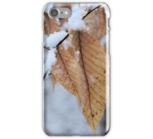 Snowy Leaf Close-up (winter snow scene) iPhone Case/Skin