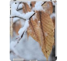 Snowy Leaf Close-up (winter snow scene) iPad Case/Skin